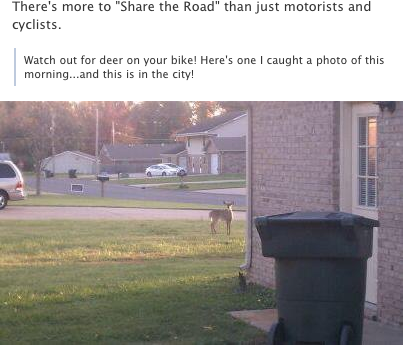 """There's more to """"Share the Road"""" than just motorists and cyclists."""